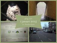 header-20150101